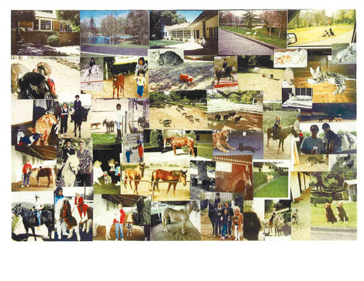 Historic Ranch, Photo Collage